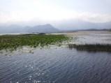 Lago de Yojoa 3