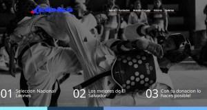 Desarrollo de aplicaciones web En honduras  Fundacion Leones, la primera fundacion en utilizar crowdfunding para la recolección colectiva de fondos en El pais.