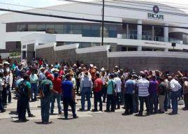 Cafetaleros exigen intervenir el Instituto Hondureño del Café