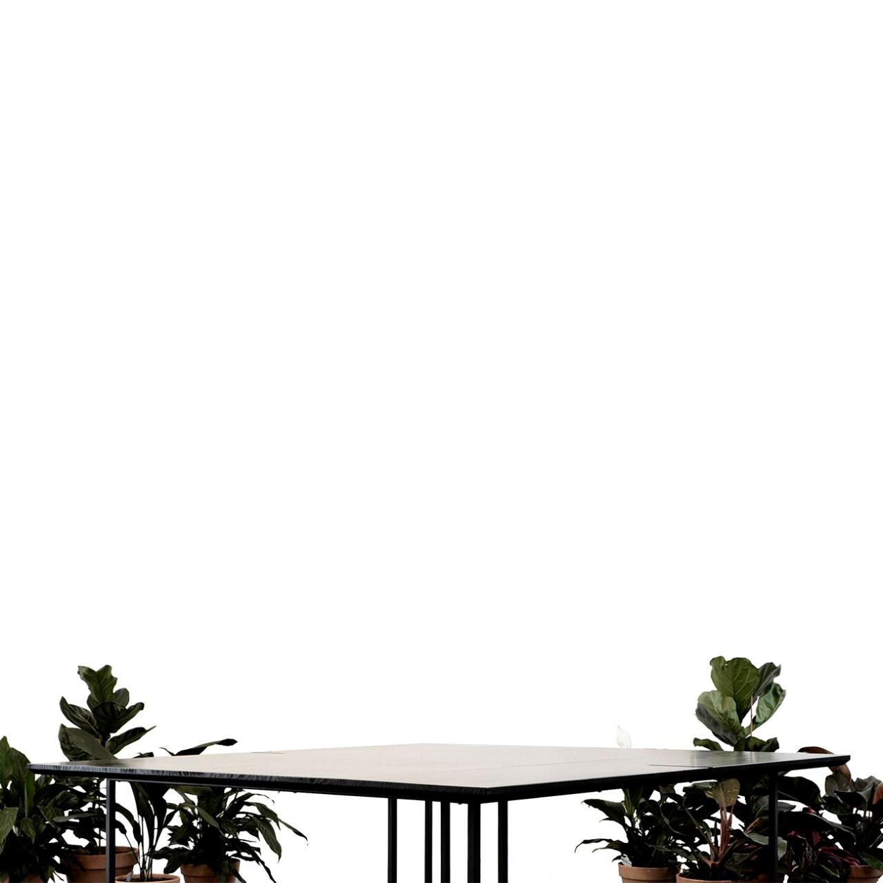 réalisations honei architecture burbuja honei seville