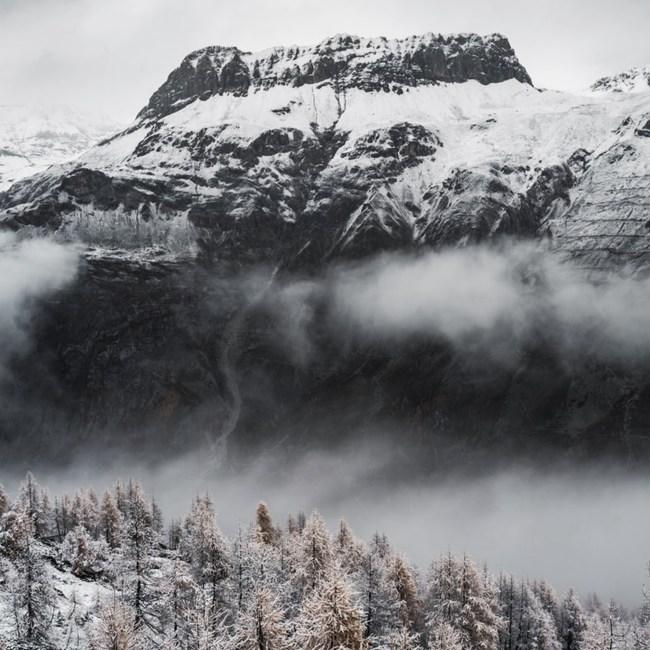 clt fôret écologie montagne