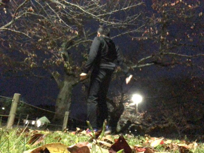 晩秋のトレーニング