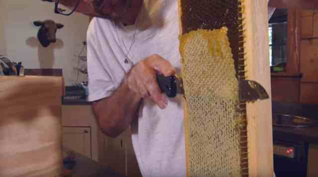 Man cutting off caps from hive frame