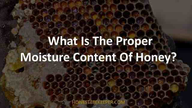 What Is The Proper Moisture Content Of Honey?