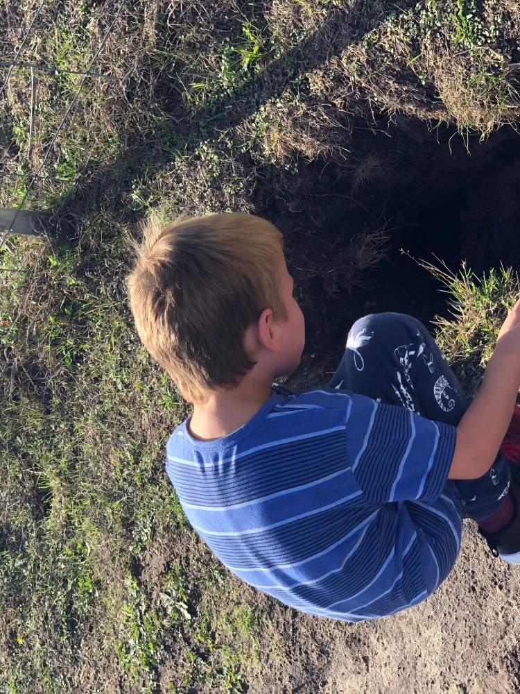 Four year old boy looking down rabbit hole