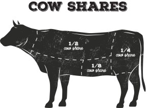 Cow_Shares