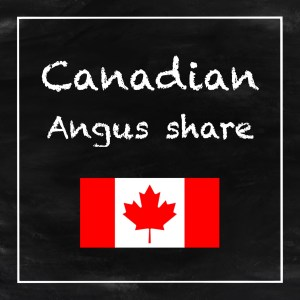 canadian-angus-share
