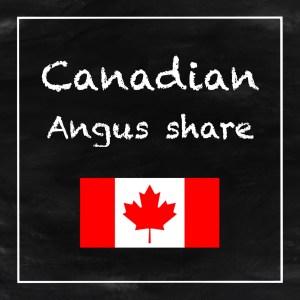 canadian-angus-share