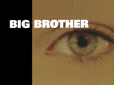 Back to Reality: Big Brother UK