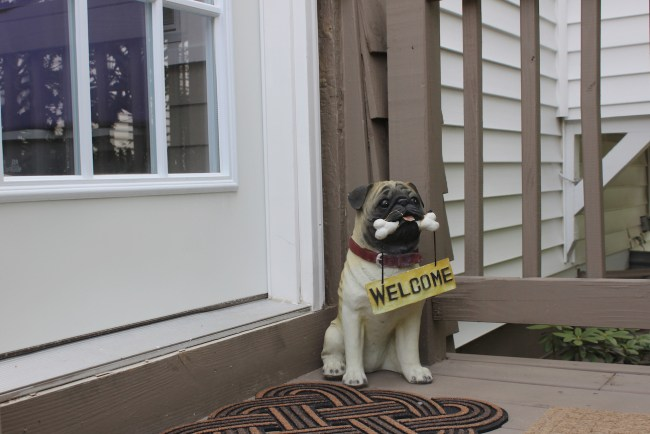 Welcome home pug