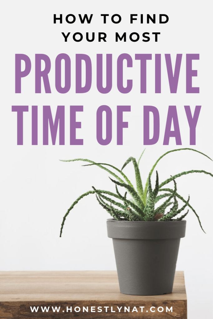 "Succulant on wooden table with the text overlay ""How to find your most productive time of day"""