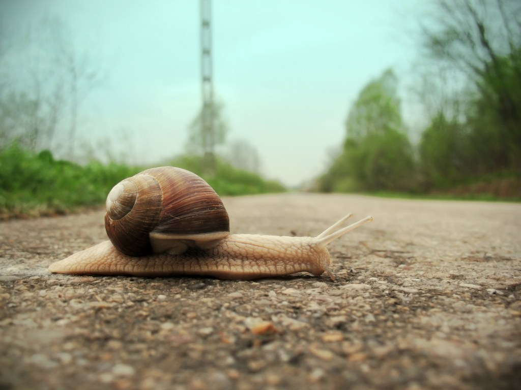 5 ways to get your life to slow down