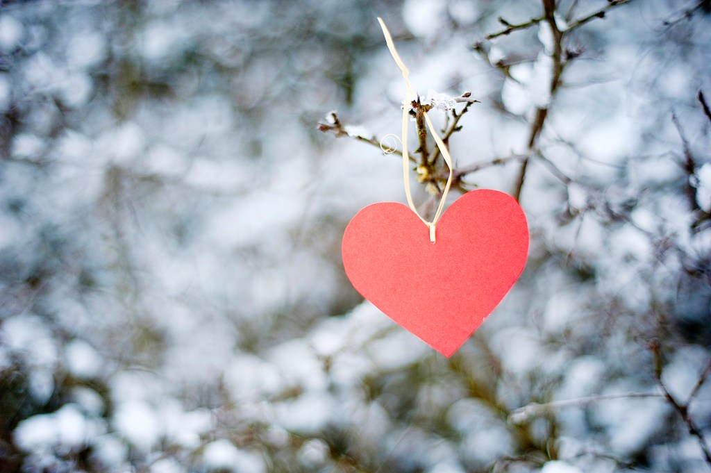 Heart on snow covered tree