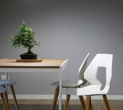 Interior Table with Bonsai Tree