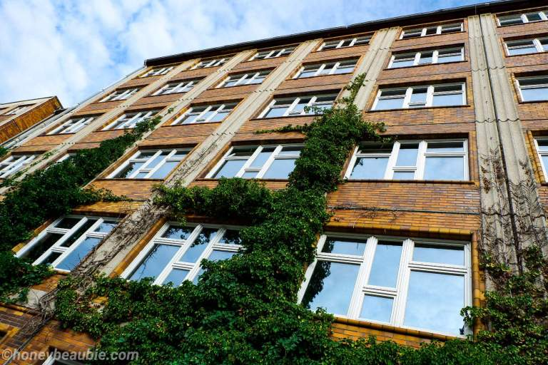 old-building-in-berlin-with-trellis-on-facade