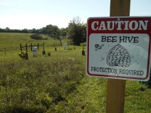 Beeware of the bees. Herb Lester Apiaries, Tennessee.