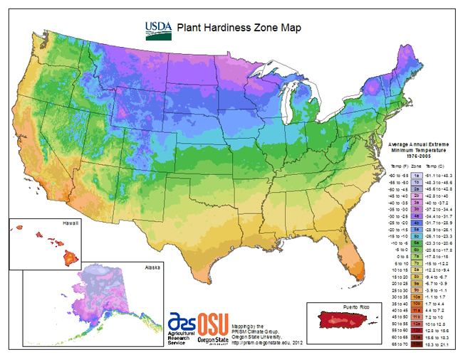 USDA-Hardiness-Zones
