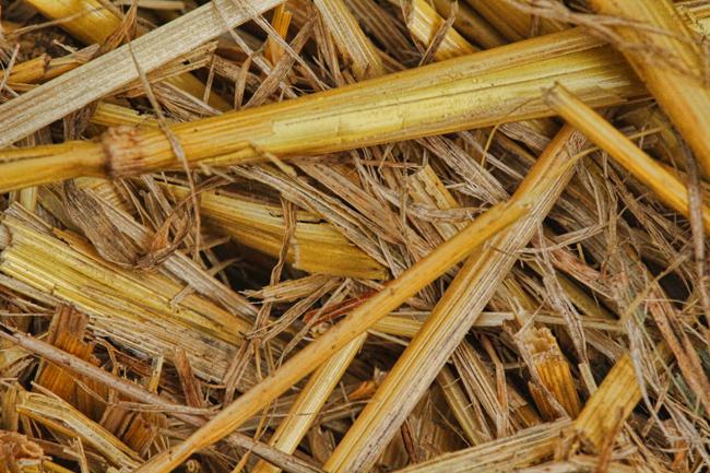 Straw-bale-folded-end
