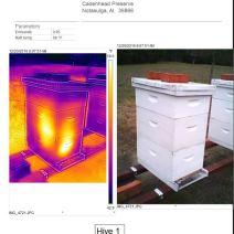 Hive 1 dec 20 2016