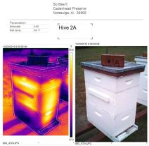 Hive 2a Dec 20 2016