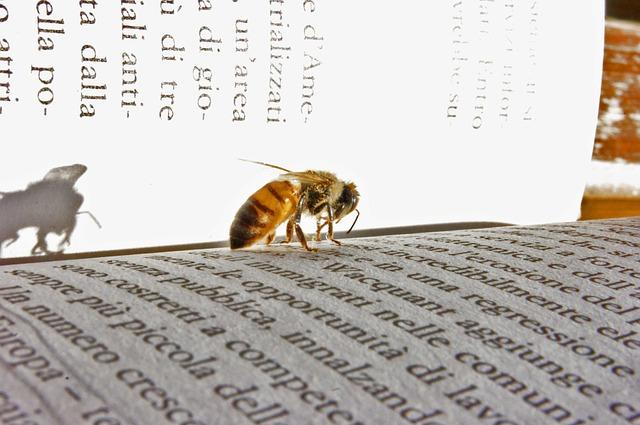 Books on honey bee biology