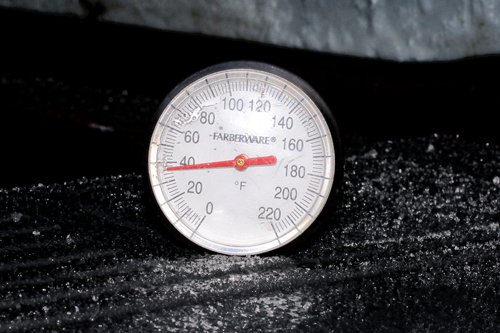 An instant read hive thermometer showing about 37 degrees F.