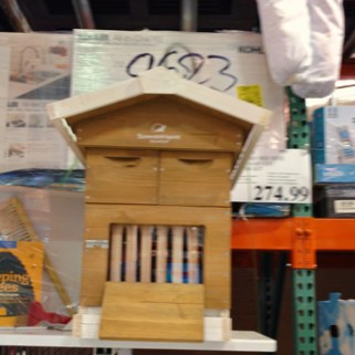 A complete beehive at my local Costco warehouse.