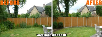 GARDEN TIDY UP AND IVY REMOVAL
