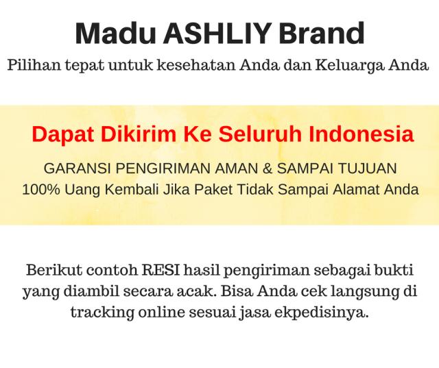 Bisa dikirim ke seluruh Indonesia