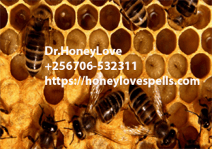 Read more about the article Honey love spell in Hawaii, powerful love attraction, binding spell