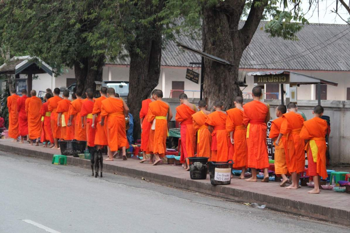 Monks queuing during alms giving ceremony in Luang Prabang