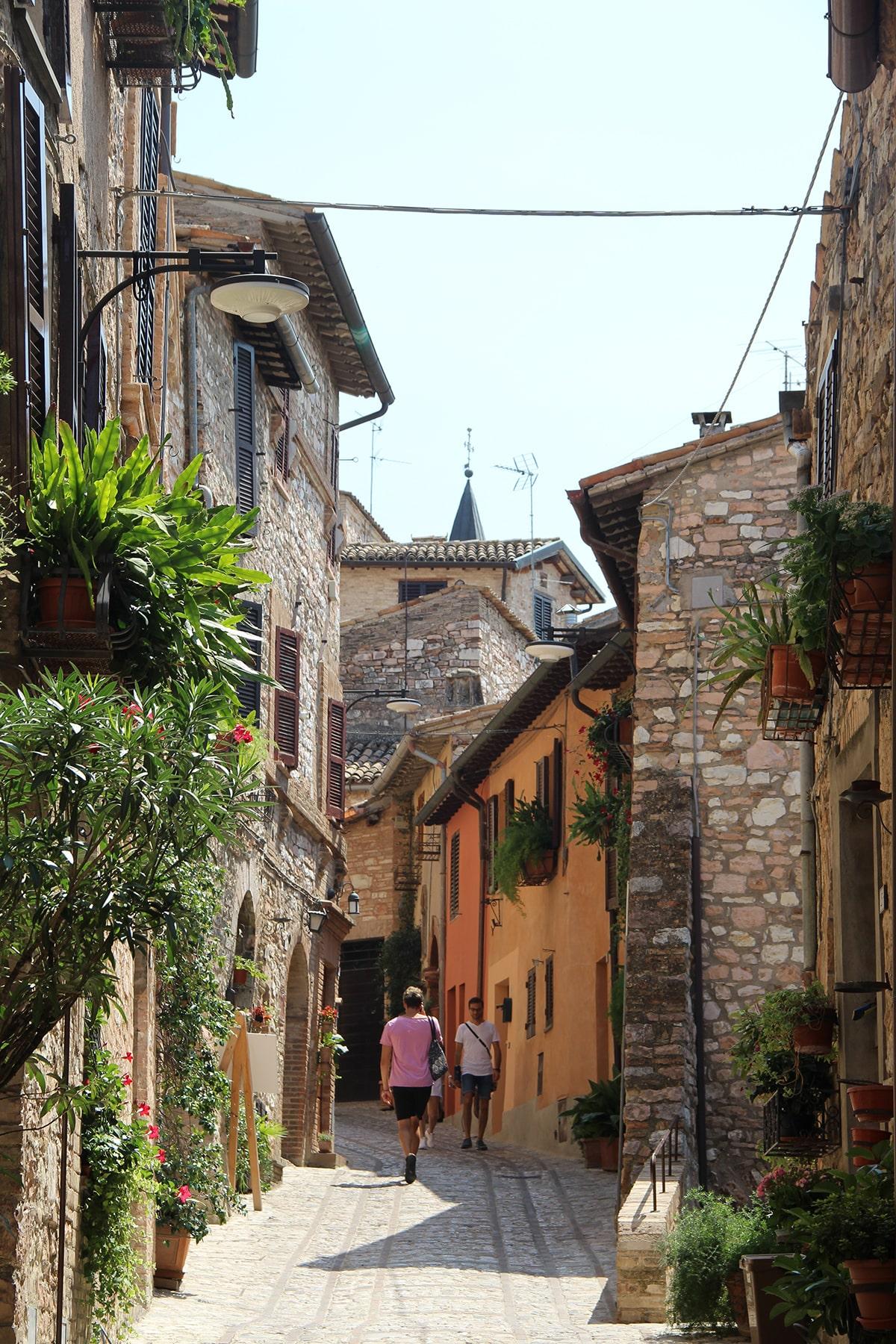 Street with flowers Spello