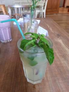 Home made lemonade with mint