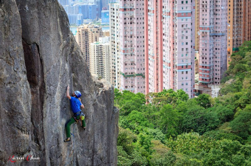 IMG_1022_MonkeyButtress_Thomas_Ercé