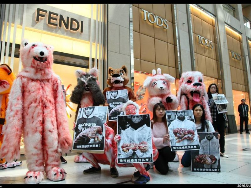 animal fur trade protest