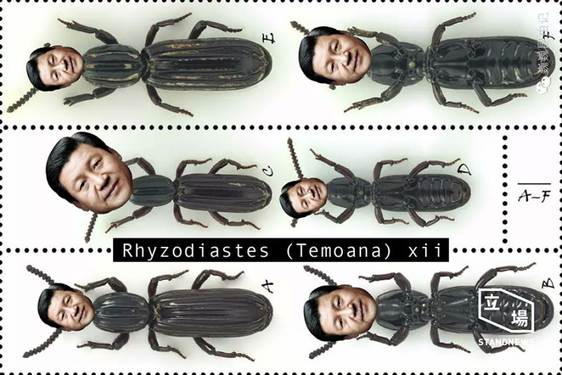 xi jinping bug name