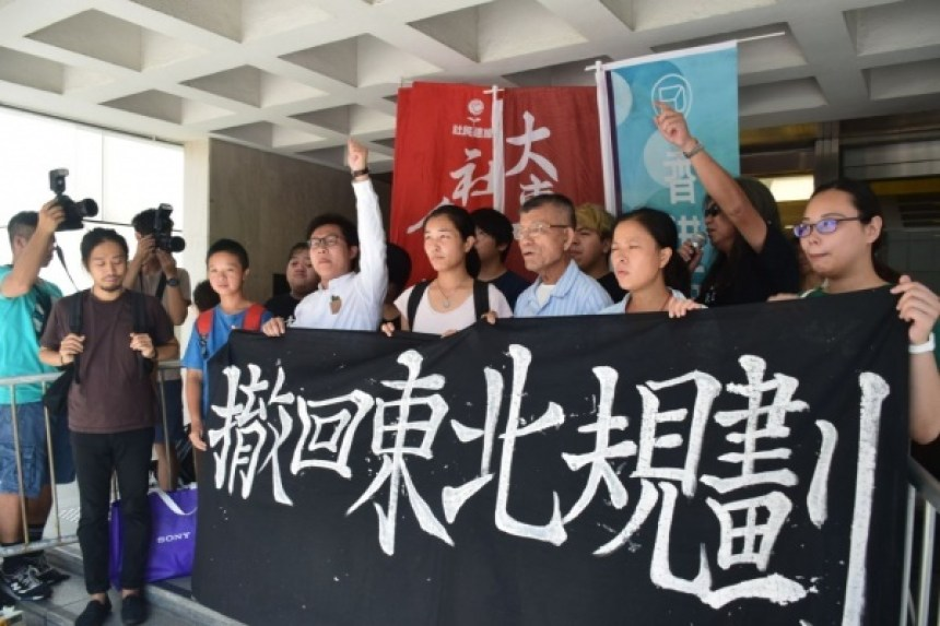 northeast new territories development protest court
