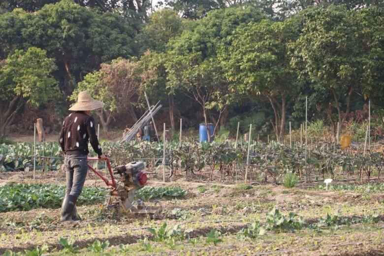 farmers varsity