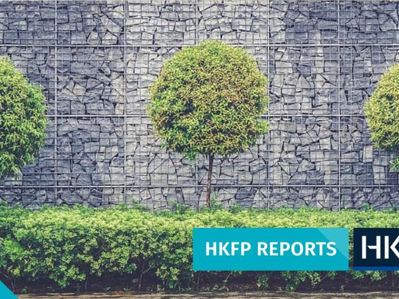 trees hong kong urban space