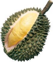Durian Voyage Gourmand à Hong Kong spécialités gastronomie