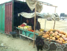 Sheep and vegetable seller