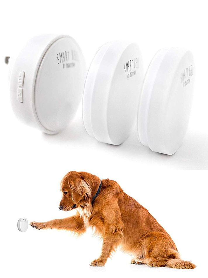 Might Paw Smart Bell amazon