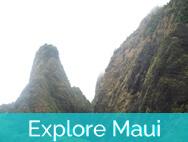 Honokeana Cove activities - explore Maui