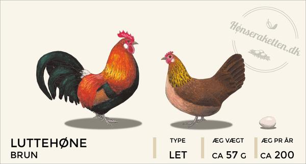 Luttehøns