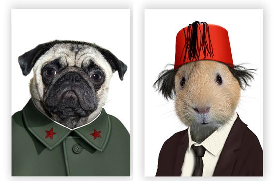 مخلوط های خنده دار عکس حیوانات خانگی و افراد مشهور www.patugh.ir