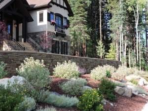 Front Lawn Landscaping Shrubs Rocks Plants CO