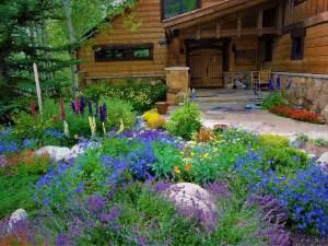Landscaping Maintenance Company, Summit County Colorado