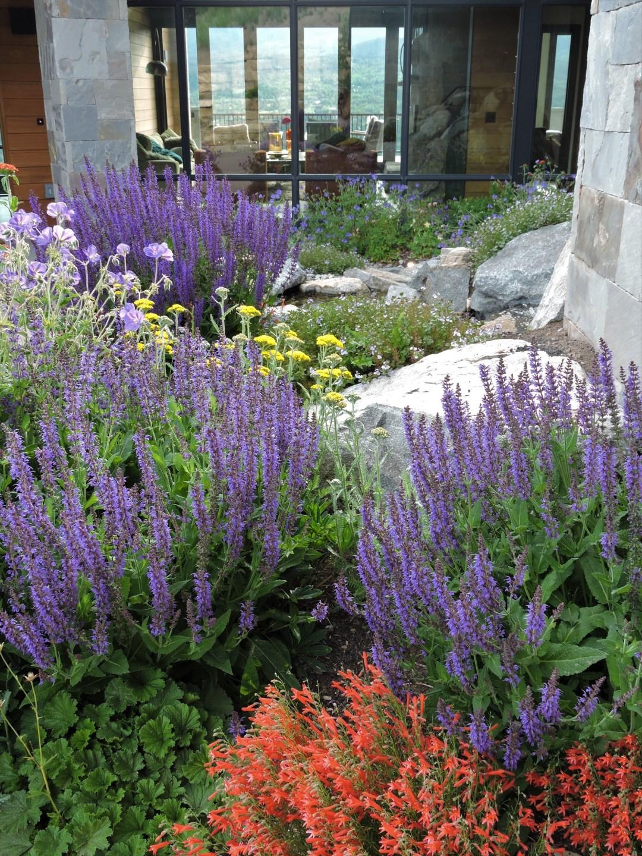 Landscaping Maintenance Keystone and Silverthorne