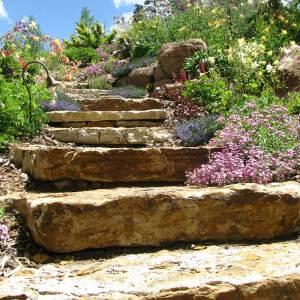 services-steps