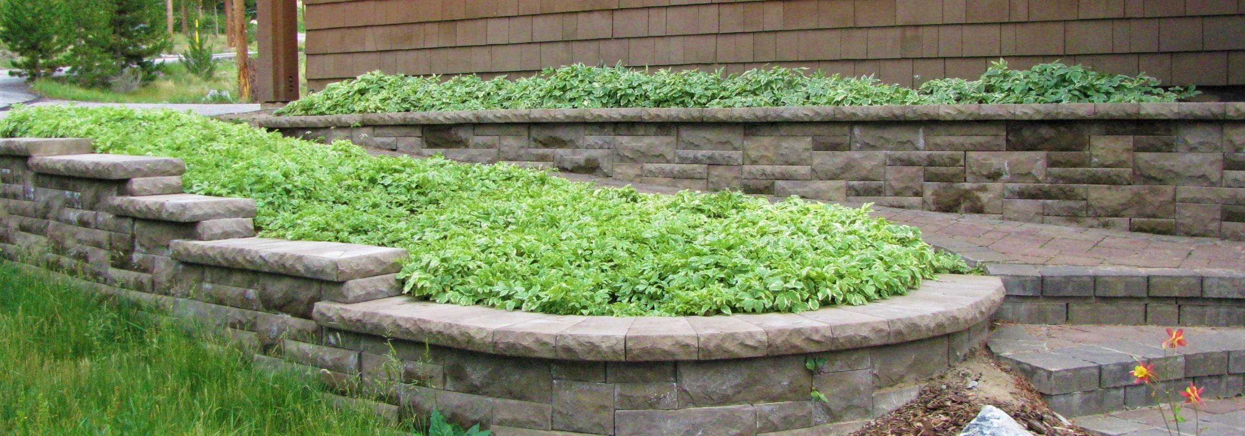 retaining wall with plants landscaper